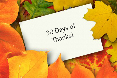 30 Days of Thanks Month of Thanks Recap: Authors and Bloggers List