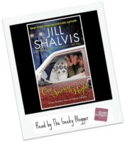 Review:  One Snowy Night by Jill Shalvis